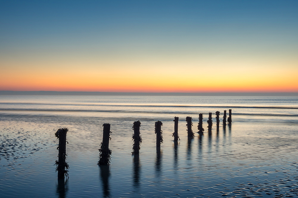 Groynes, Brean Beach, Somerset. - 1209-248