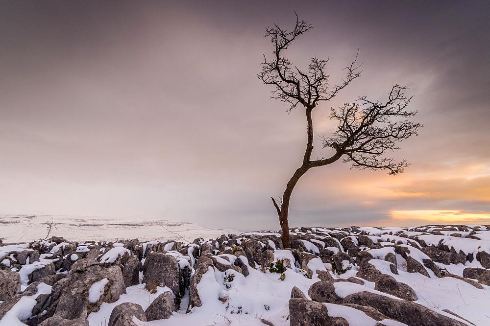 Twistleton Scar End in snow, Ingleton, Yorkshire Dales, Yorkshire, England, United Kingdom, Europe - 1209-76