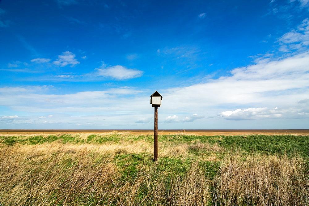 Bird hut, Horseshoe Point, Lincolnshire, England, United Kingdom, Europe - 1209-82