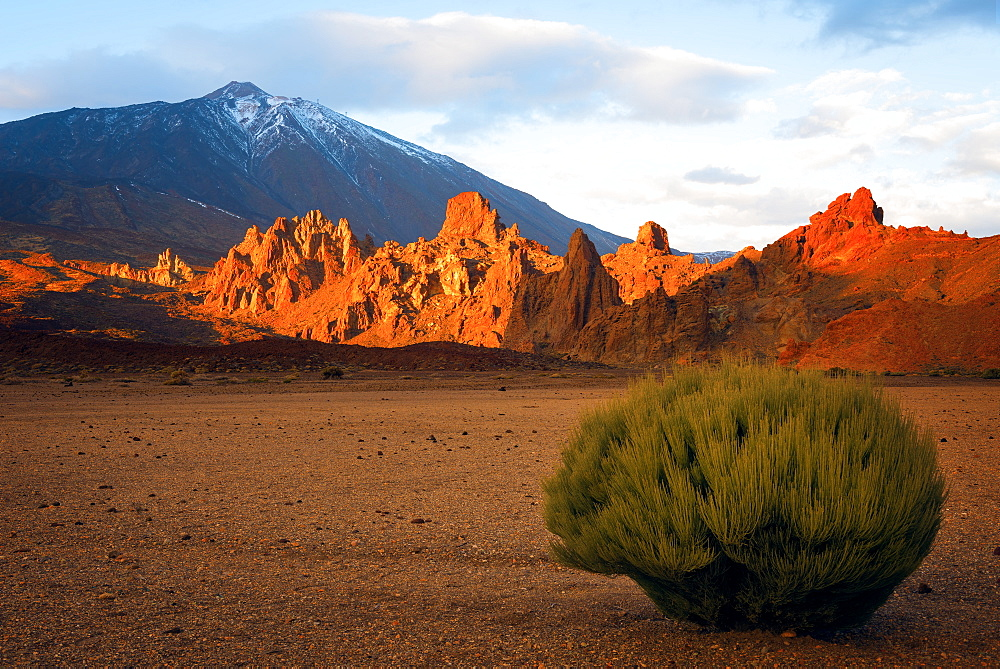 Teide National Park, UNESCO World Heritage Site, Tenerife, Canary Islands, Spain, Europe