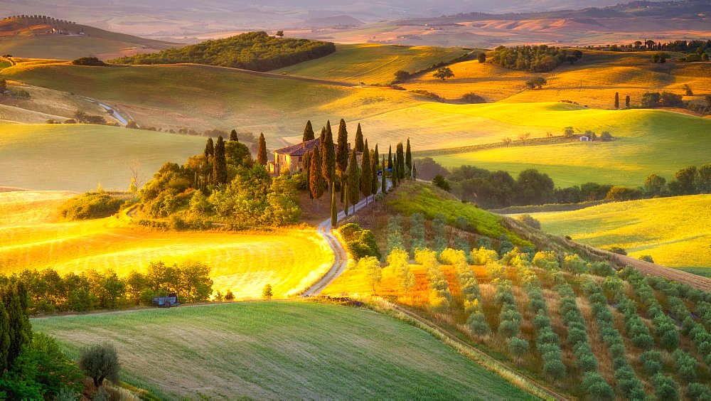 Classic Tuscan landscape at sunrise, Tuscany, Italy, Europe