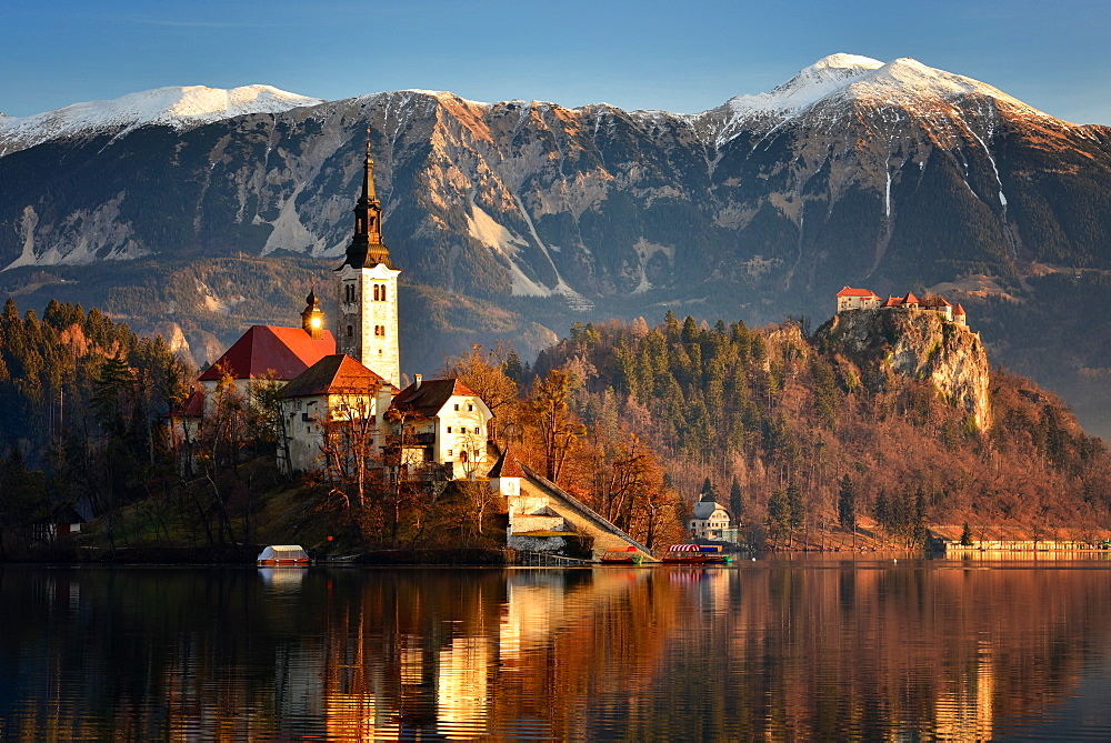 Lake Bled at dawn with Santa Maria Church (Church of Assumption), Gorenjska, Julian Alps, Slovenia, Europe