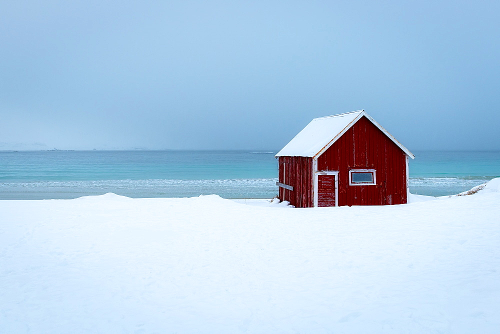 Red rorbuer (fisherman's hut) on a snowy winters day, Ramberg, Lofoten Islands, Nordland, Arctic, Norway, Europe
