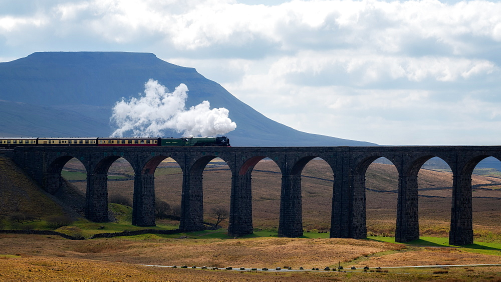 Steam train crossing the Ribblehead Viaduct, Yorkshire Dales National Park, Yorkshire, England, United Kingdom, Europe