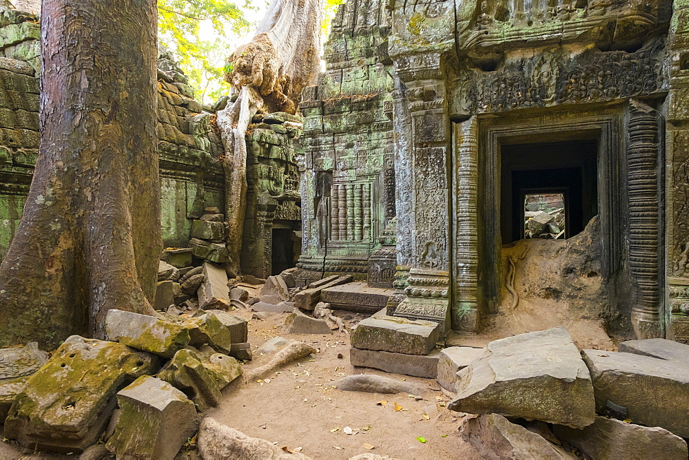 Ta Prohm temple (Rajavihara), Angkor, UNESCO World Heritage Site, Siem Reap Province, Cambodia, Indochina, Southeast Asia, Asia
