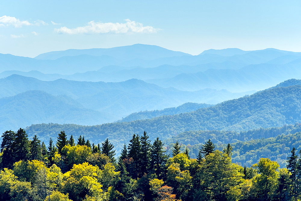 Great Smoky Mountains National Par, Newfound Gap, border of North Carolina and Tennessee, North Carolina, United States of America, North America