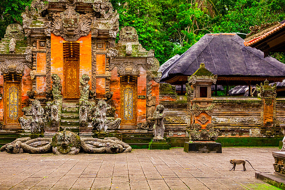 The Sacred Monkey Forest Ubud. Home to 700 monkeys.