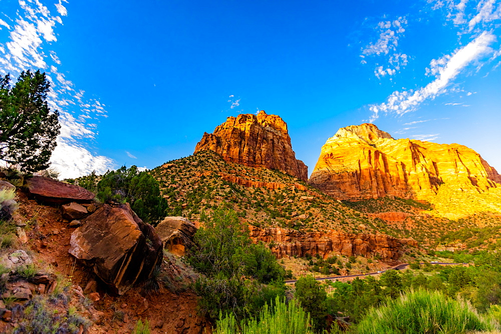 Scenery along the Canyon Overlook Trail, Zion National Park, Utah, United States of America, North America - 1218-1304