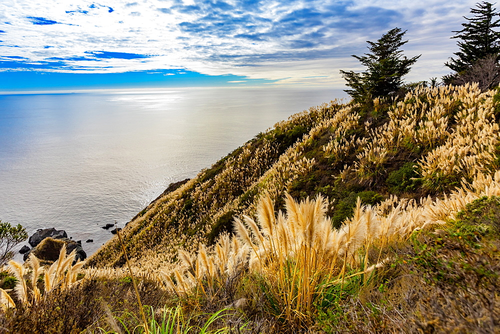 Ocean view near Partington Cove off Highway 1, California, United States of America, North America - 1218-1405