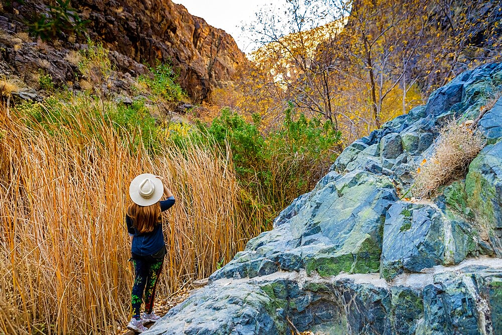 Woman hiking through the waterfall and Artist Palette Drive, Death Valley, California, United States of America, North America - 1218-1411