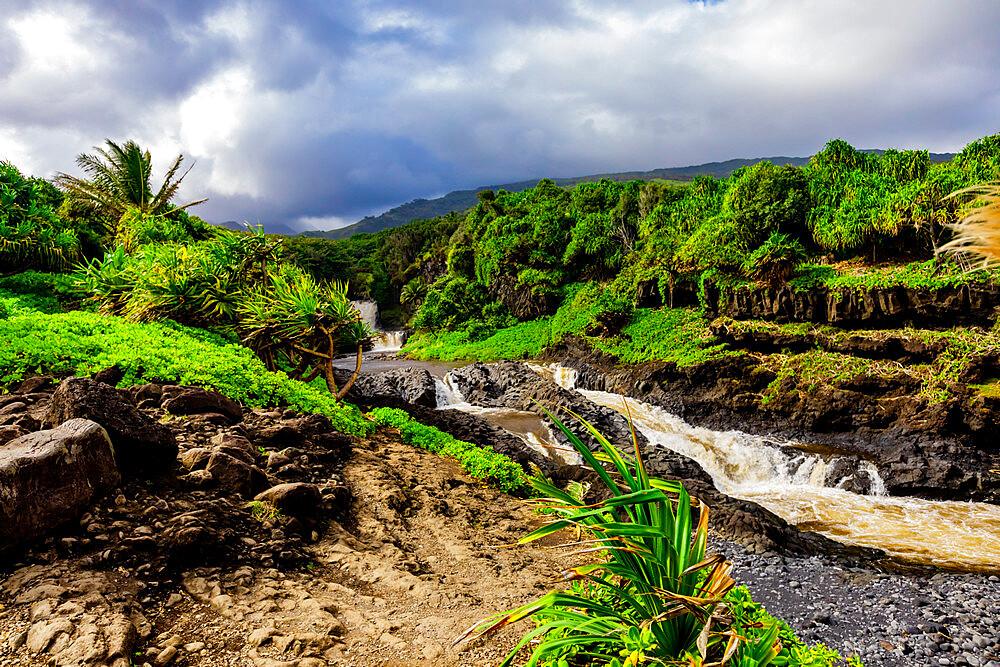 Beautiful waterfall on Maui, Hawaii, United States of America, North America - 1218-1418