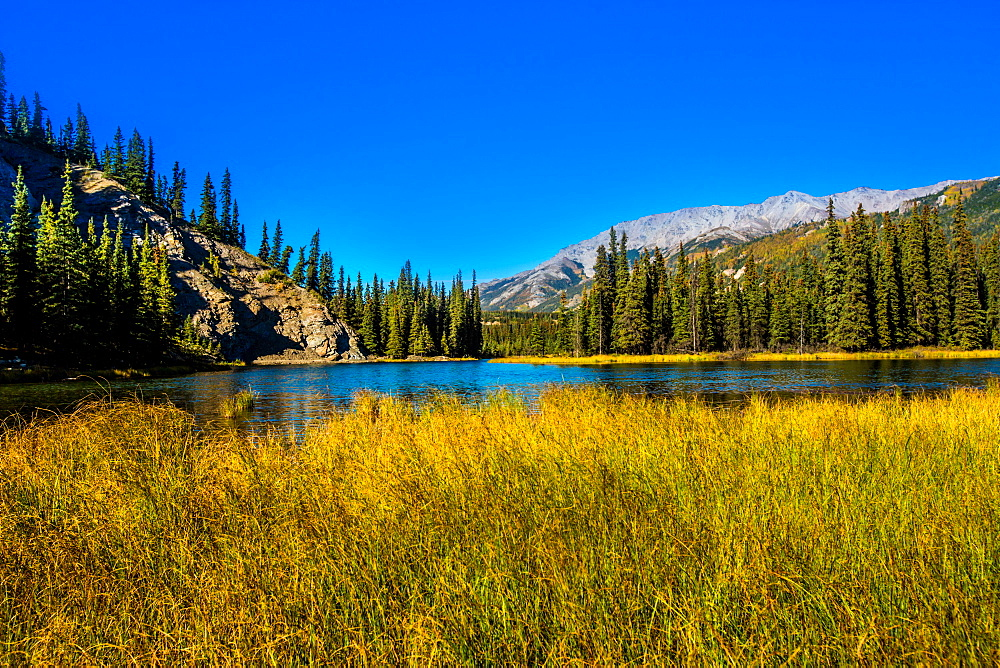 View of lake in Denali National Park, Alaska, United States of America, North America