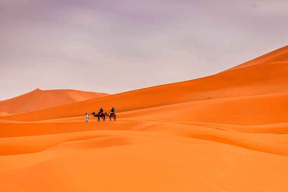 Merzouga Desert - 1218-659