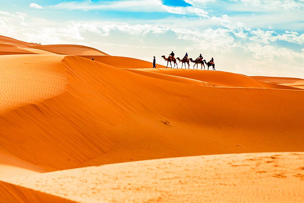 Merzouga Desert - 1218-663