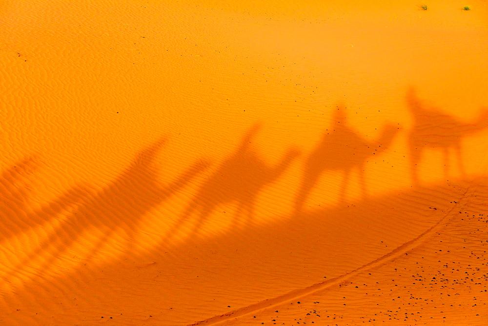 Merzouga Desert - 1218-664