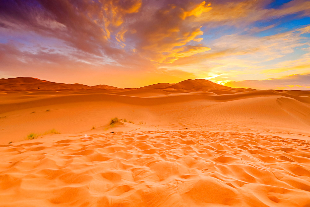 Merzouga Desert - 1218-666