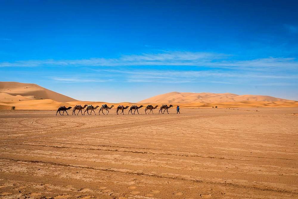 Merzouga Desert - 1218-667