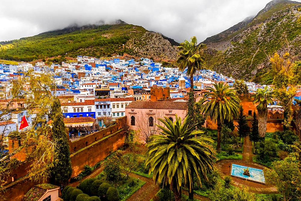 Blue City of Chefchaouen, Morocco, North Africa, Africa - 1218-680