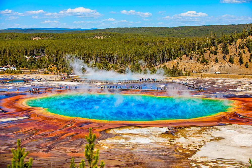 Grand Prismatic Spring, Yellowstone National Park, UNESCO World Heritage Site, Wyoming, United States of America, North America