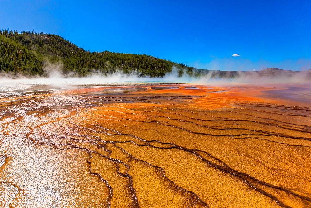 Grand Prismatic Spring, Yellowstone National Park, UNESCO World Heritage Site, Wyoming, United States of America, North America - 1218-770