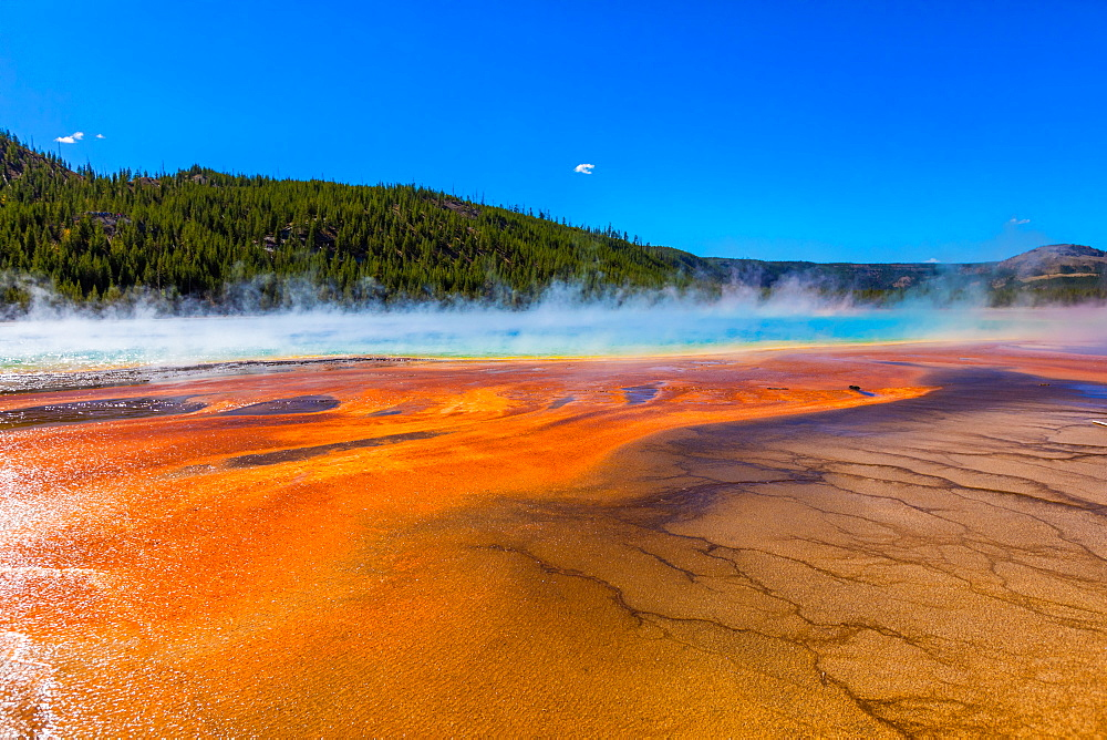Grand Prismatic Spring, Yellowstone National Park, UNESCO World Heritage Site, Wyoming, United States of America, North America - 1218-771