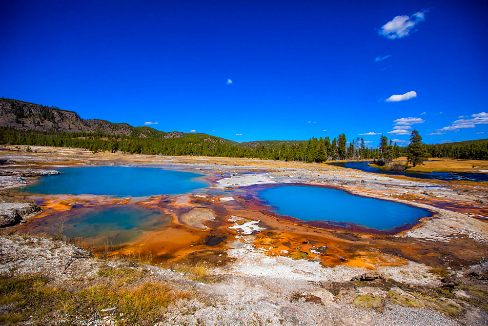 Grand Prismstic Spring in Yellowstone National Park. - 1218-774