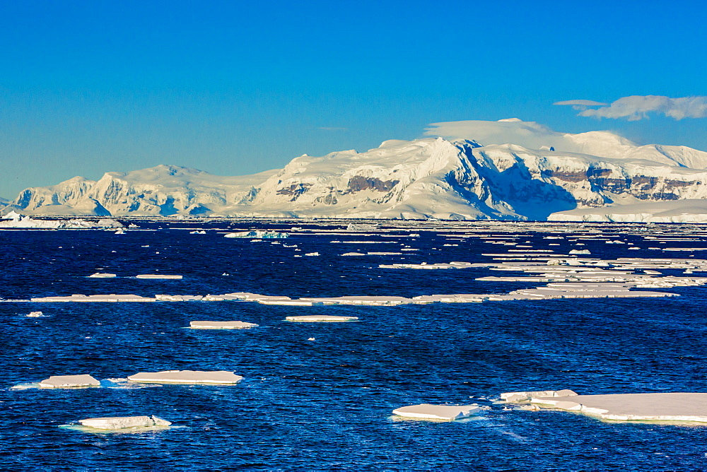 Scenic view of the glacial ice and floating icebergs in Antarctica. - 1218-786