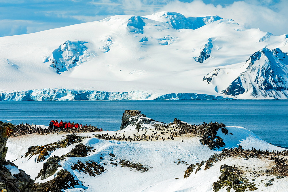 Scenic view of Antartica, Chin Strap Penguins and people roaming around the ice.