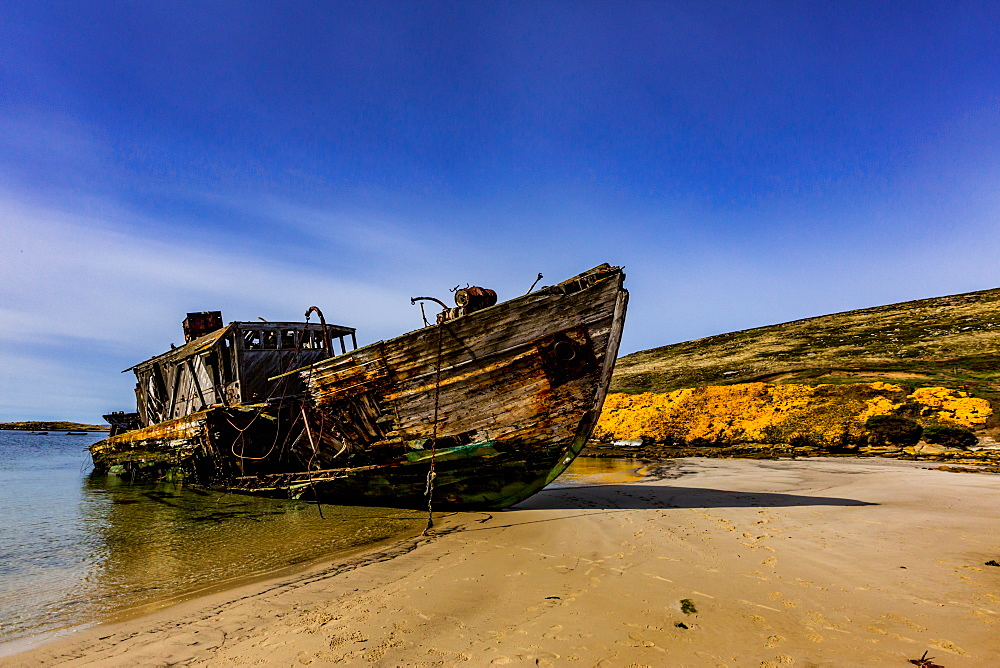 View from of an abandoned ship on New Island in the Falkland Islands. - 1218-795