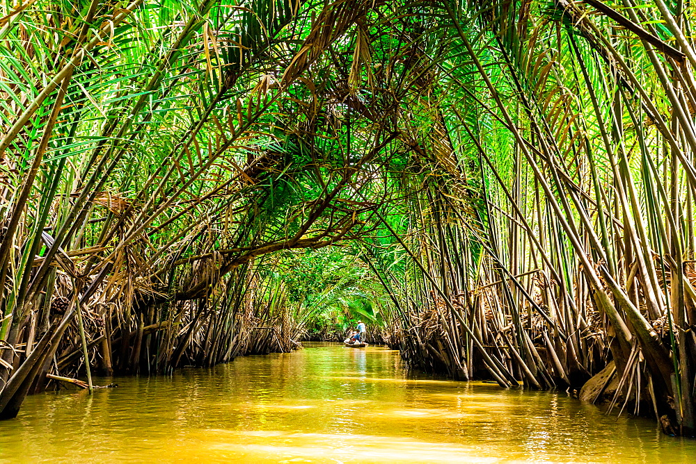 Sailing through the tributaries of the Mekong River, Vietnam, Indochina, Southeast Asia, Asia