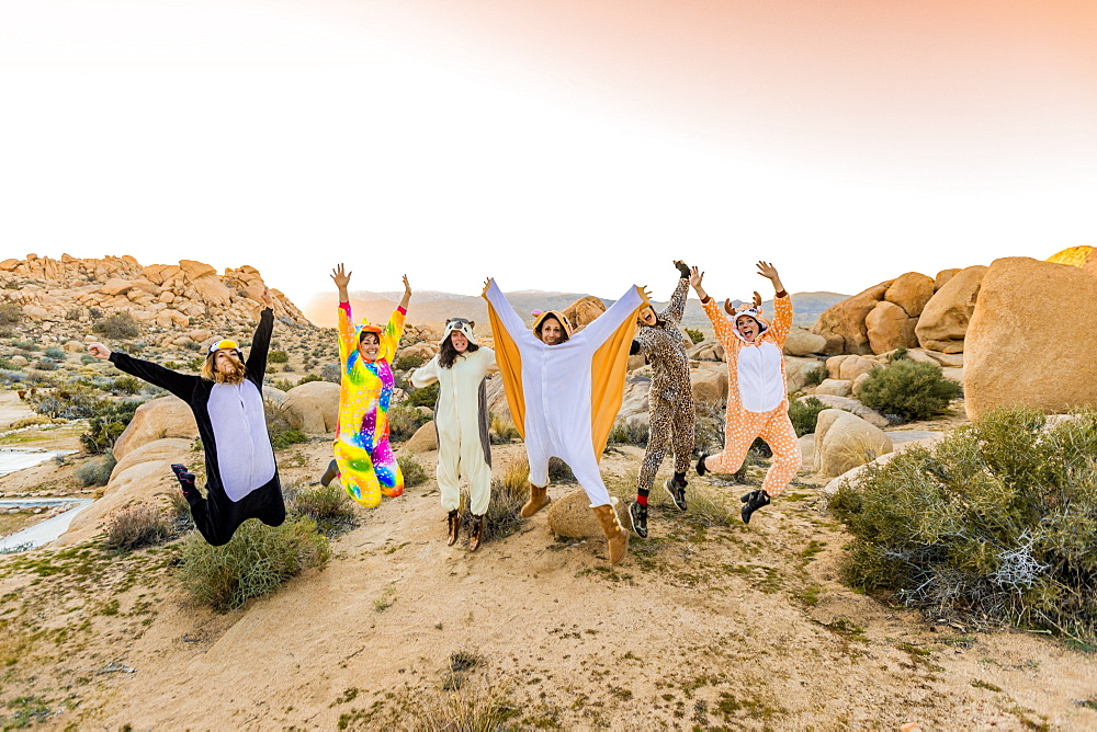 Group of friends in spirit animal onesies celebrating the new year in Joshua Tree.