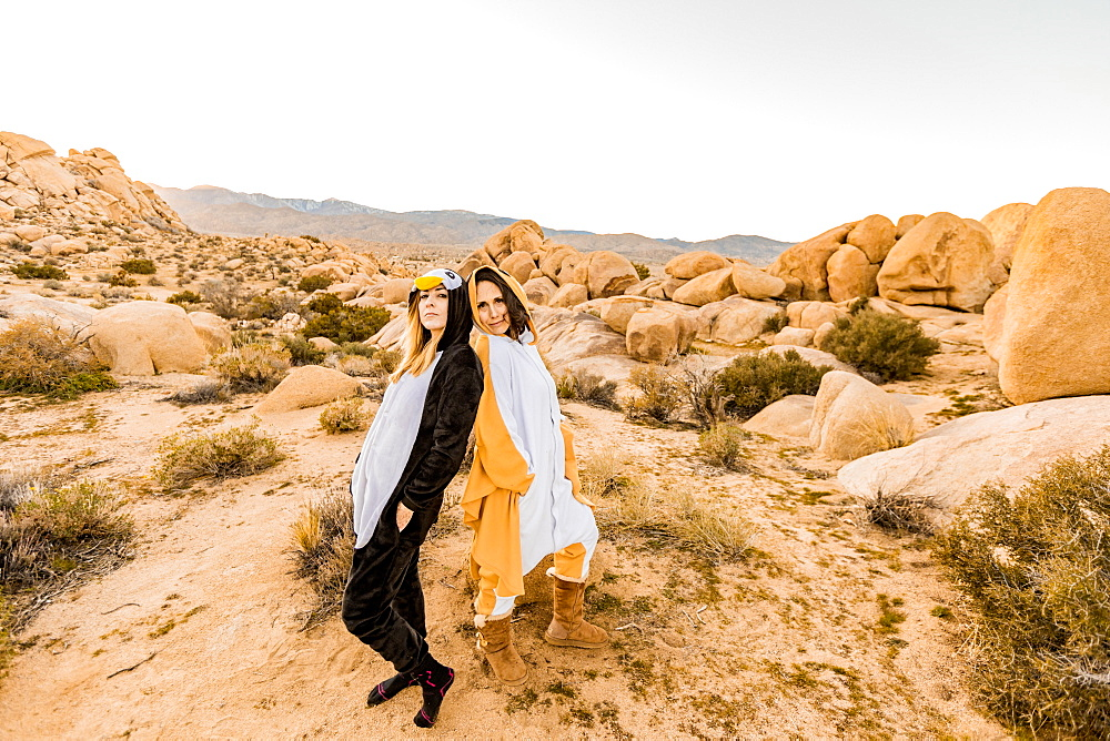 Two friends in spirit animal onesies celebrating the new year in Joshua Tree, California, United States of America, North America