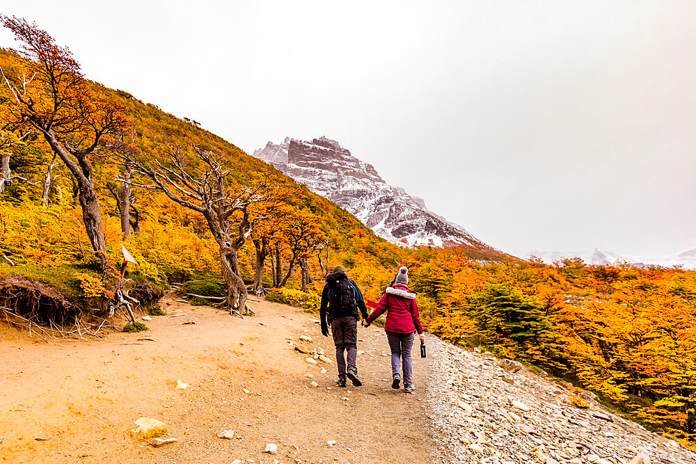 Enjoying the peaceful and beautiful scenery of Torres del Paine National Park, Patagonia, Chile - 1218-972