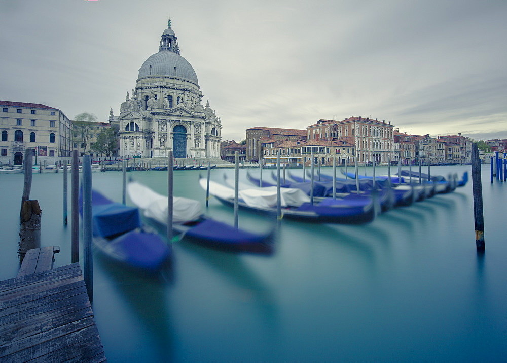 The 17th century church of Santa Maria della Salute across the Grand Canal with a row of gondolas slowly moving in the wind, Venice, UNESCO World Heritage Site, Veneto, Italy, Europe