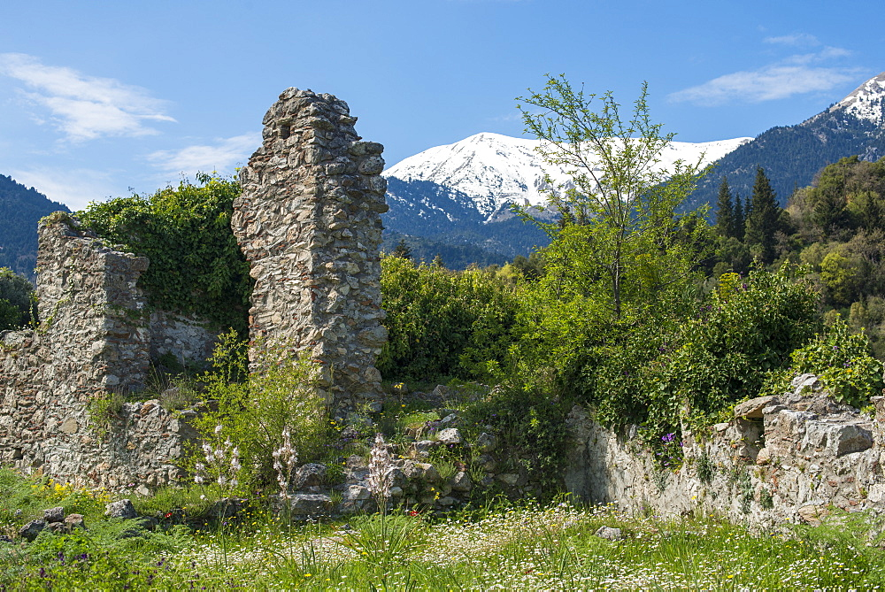 The ancient ruins of Mystras, UNESCO World Heritage Site, and the snow covered Taygetos Mountains in the distance, Peloponnese, Greece, Europe - 1225-1183