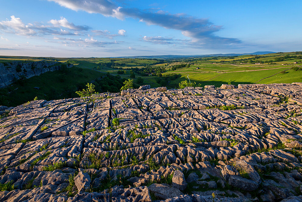 Evening light shows dramatic surface of the famous Limestone Pavement at Malham Cove in the Yorkshire Dales National Park - 1225-1312