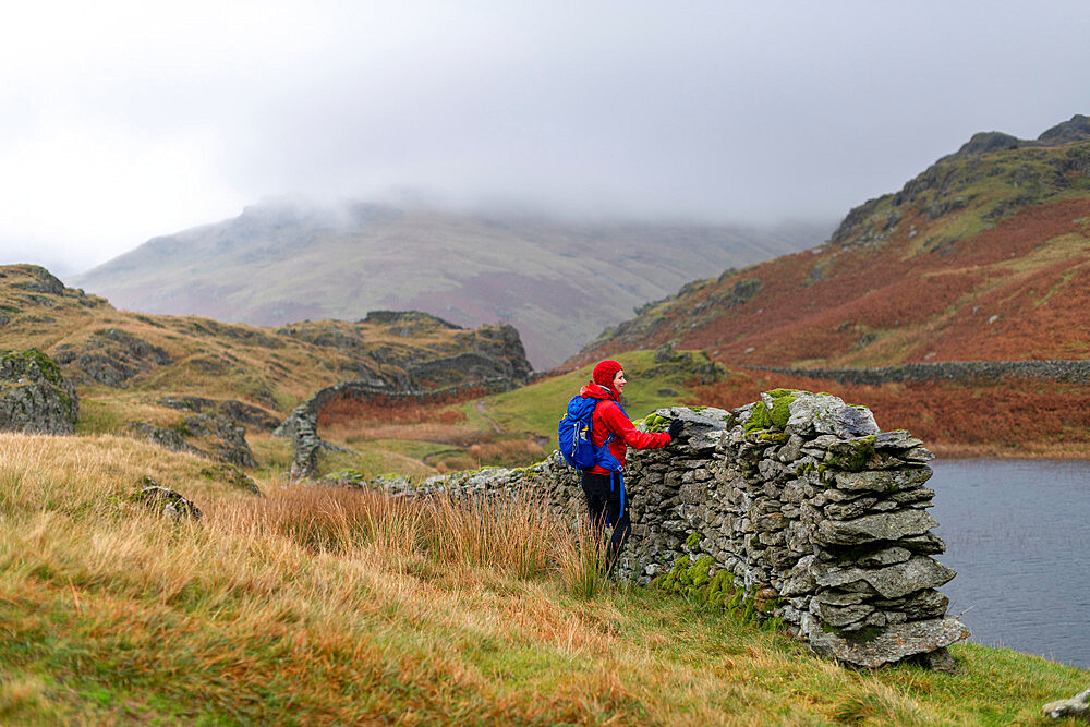 A woman hiking in the English Lake Distirct near Grasmere stops by a dry stone Lakeland wall beside Alcock Tarn