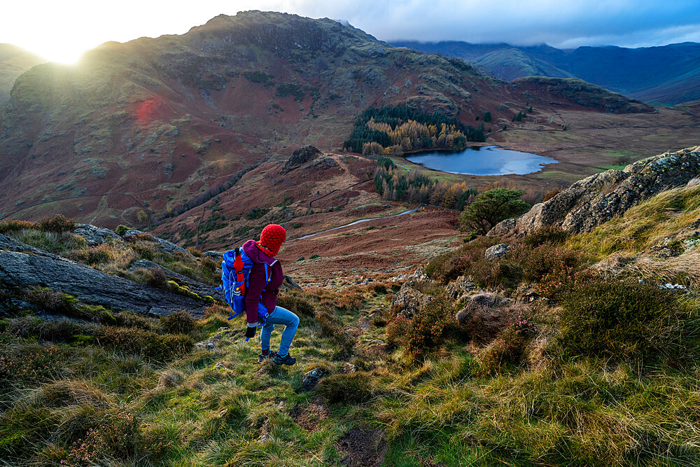 A woman hiking from Lingmoor Fell descends to Blea Tarn and Great Langdale in the English Lake Distirct - 1225-1315