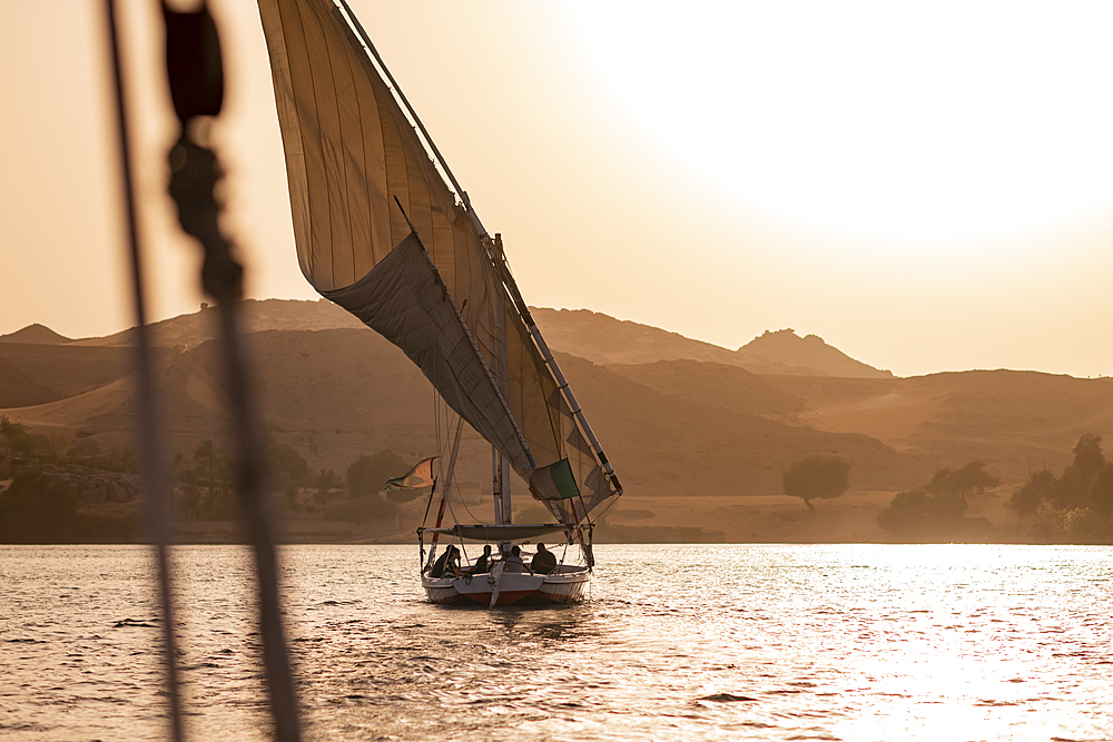 A traditional Felucca sailboat with wooden masts and cotton sails at sunset on the River Nile, Aswan, Egypt, North Africa, Africa