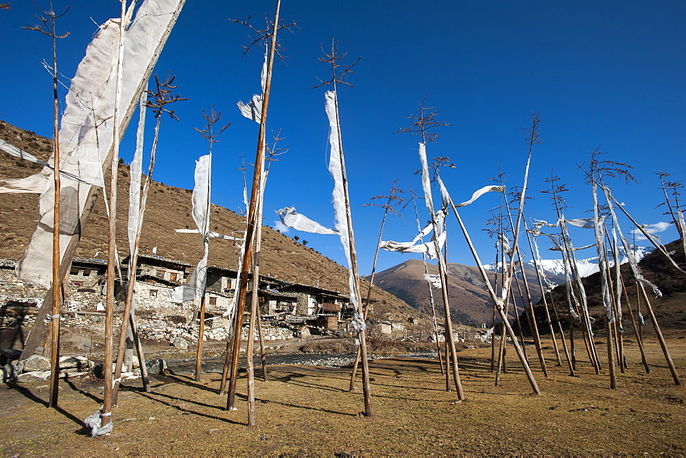 Prayer flags at the small village of Chebisa in northern Bhutan on the Laya-Gasa trekking route, Thimpu district, Bhutan, Asia