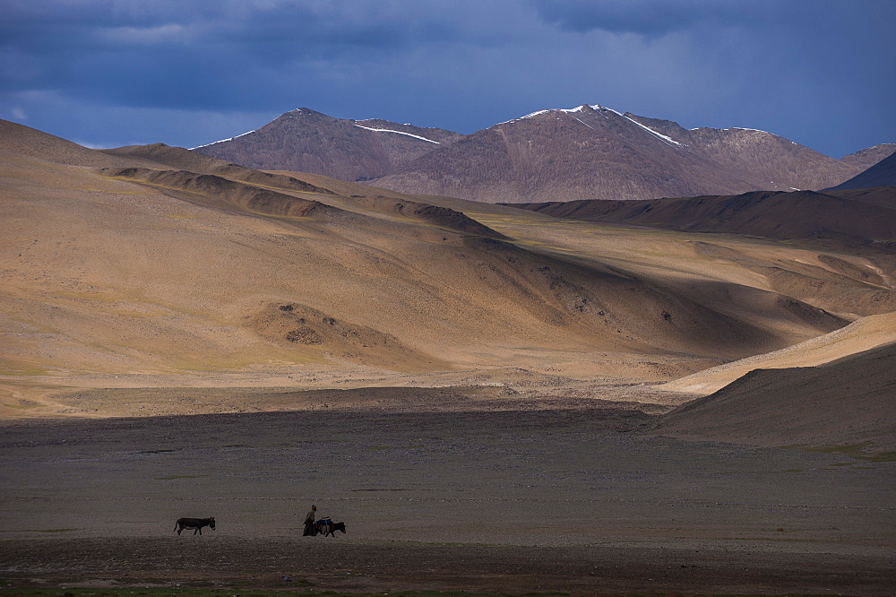 A nomad near Tso Moriri in the remote region of Ladakh, north India, Asia