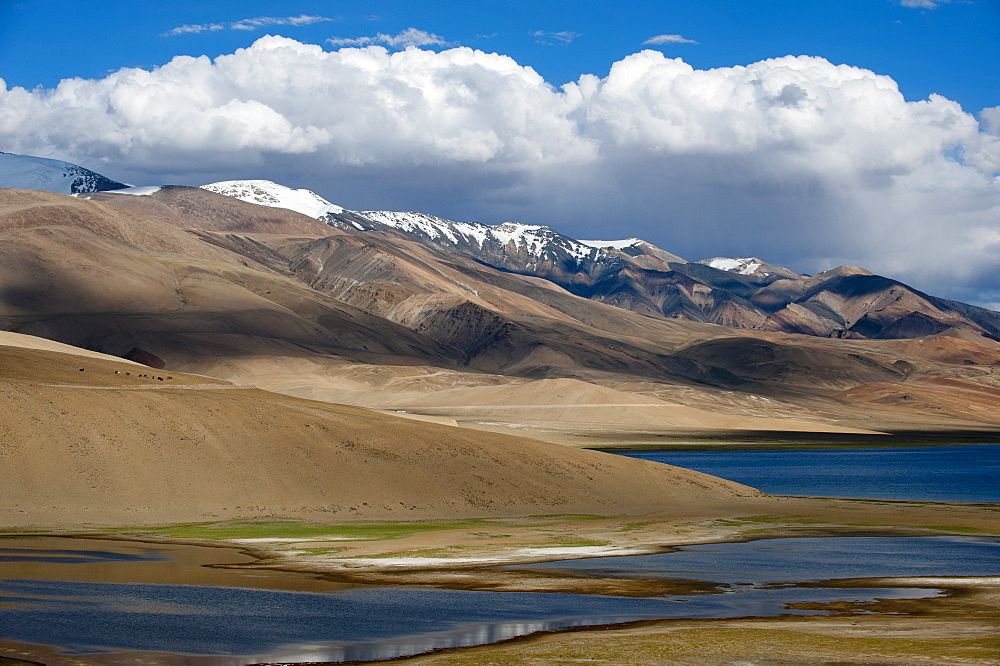 Tso Moriri lake in the Himalayan region of Ladakh in north India is at an altitude of 4,595 m