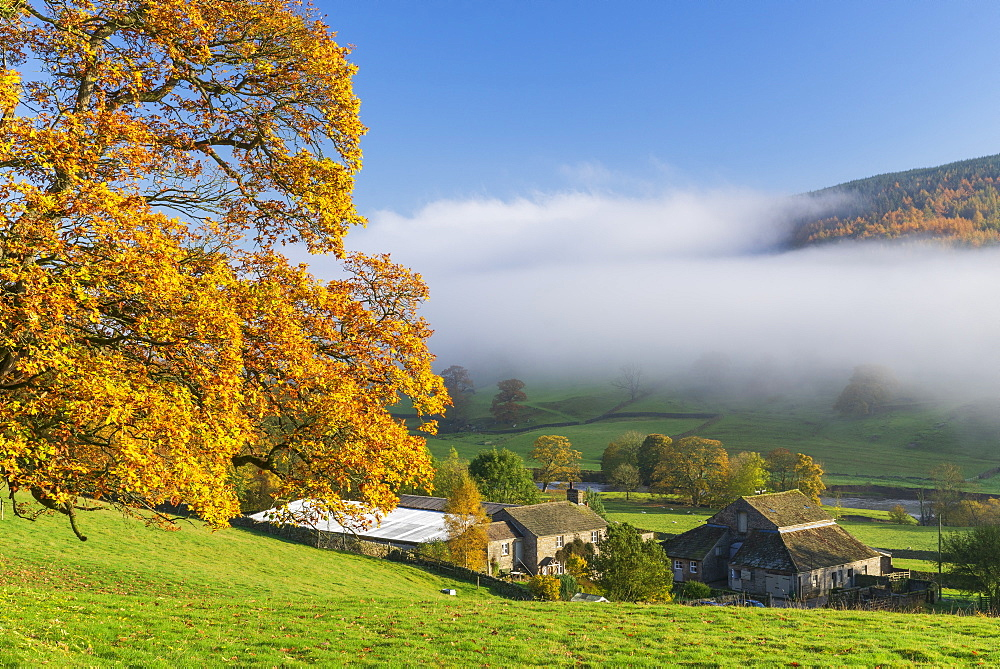 Mist around Simons Seat and along the River Wharfe in Wharfedale, The Yorkshire Dales, Yorkshire, England, United Kingdom, Europe - 1228-159