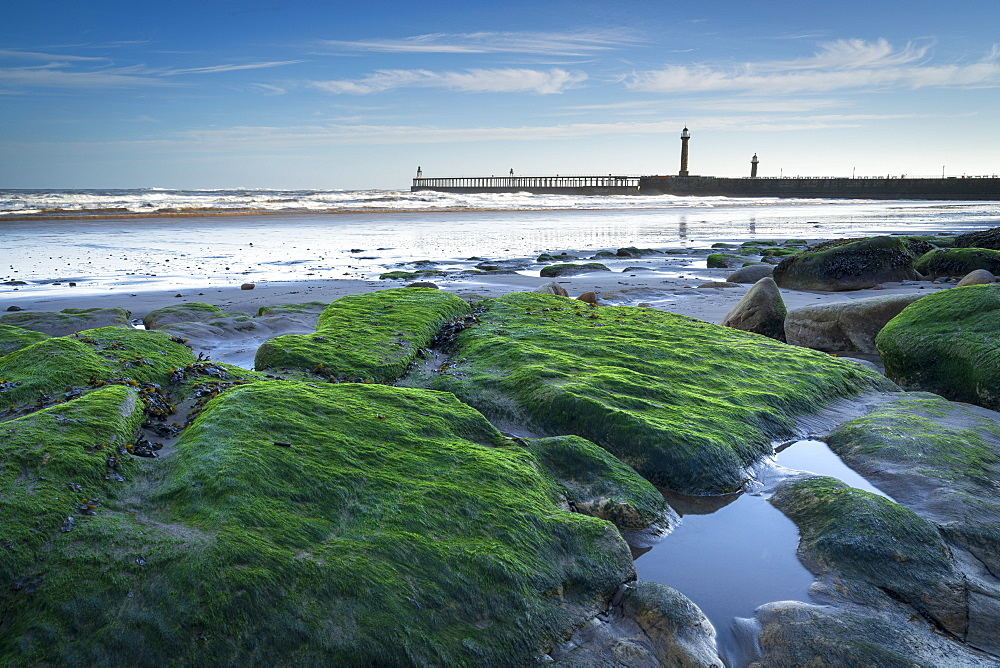 Whitby piers at low tide in winter, Whitby, North Yorkshire, Yorkshire, England, United Kingdom, Europe - 1228-197