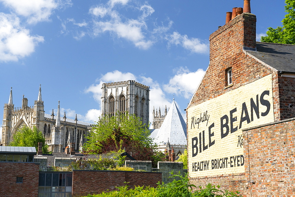 York Minster and the Bile Beans Ghost sign at Lord Mayors Walk, just outside the York city Bar Walls, York, North Yorkshire, Yorkshire, England, United Kingdom, Europe - 1228-215