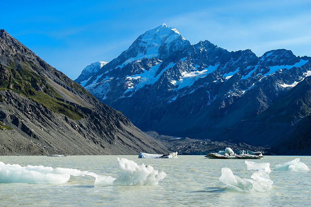 Icebergs float in a cold lake with a large snow covered mountain, South Island, New Zealand, Pacific