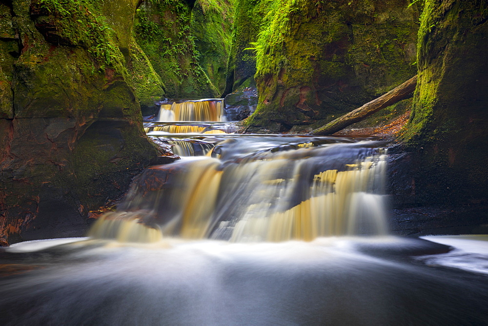 Gorge at The Devil's Pulpit, Finnich Glen, Stirlingshire, Scotland, United Kingdom, Europe
