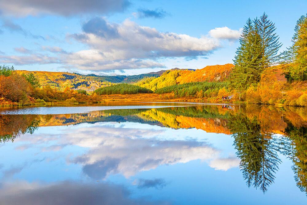 Lochan Reoidhte, Loch Lonond and The Trossachs National Park, Scotland, United Kingdom, Europe - 1237-378