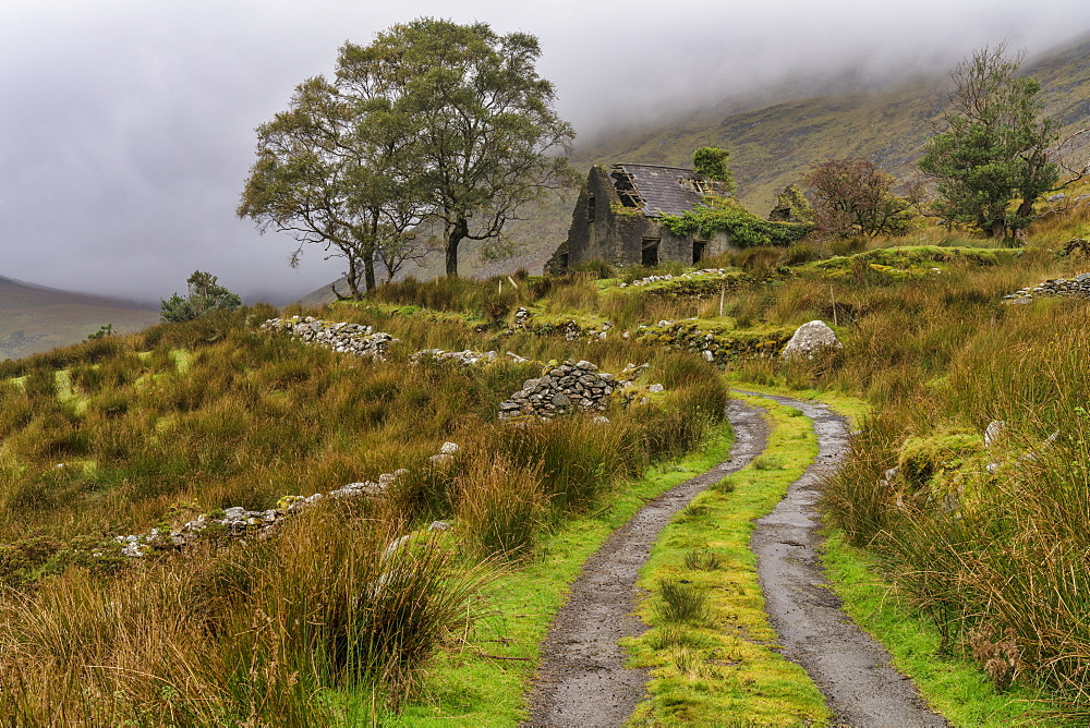 Drumluska, Black Valley, County Kerry, Ireland