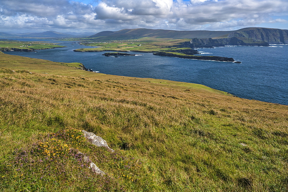 Valentia Island, County Kerry, Munster, Republic of Ireland, Europe - 1240-259